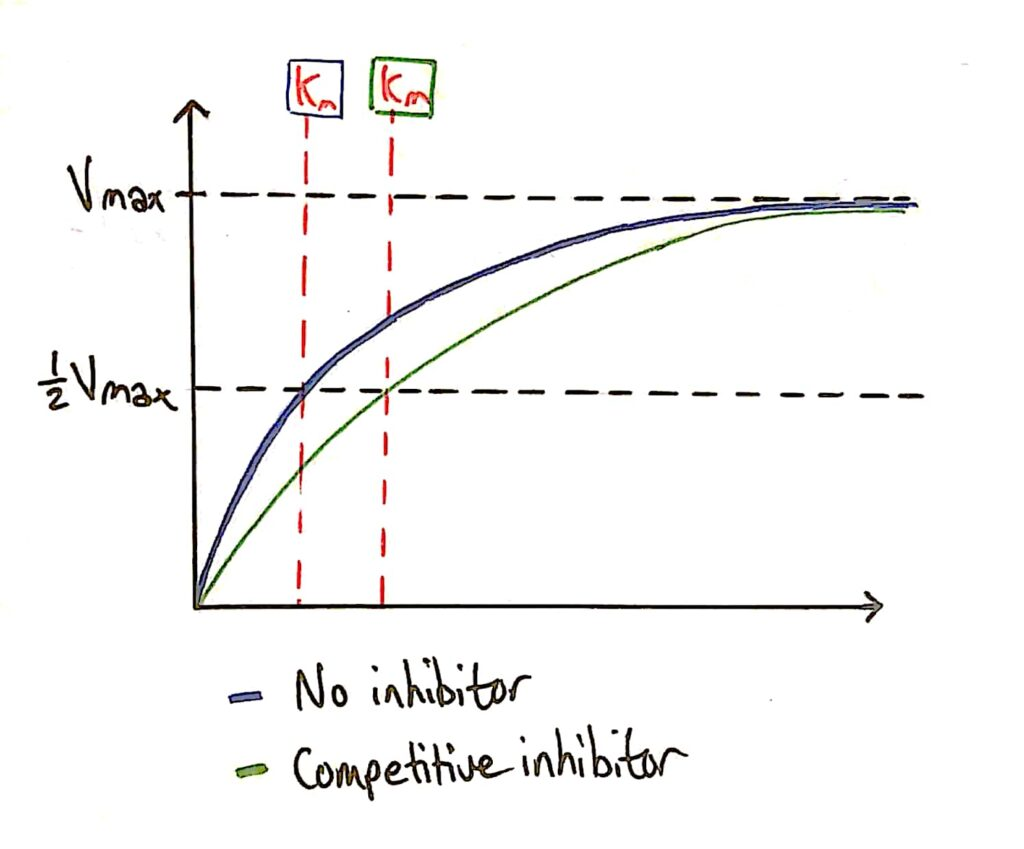 Km competitive inhibitor
