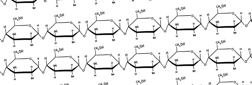 polysaccharide (starch)